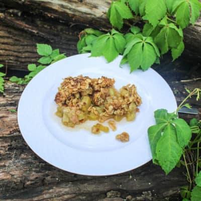Rhubarb Crunch Recipe