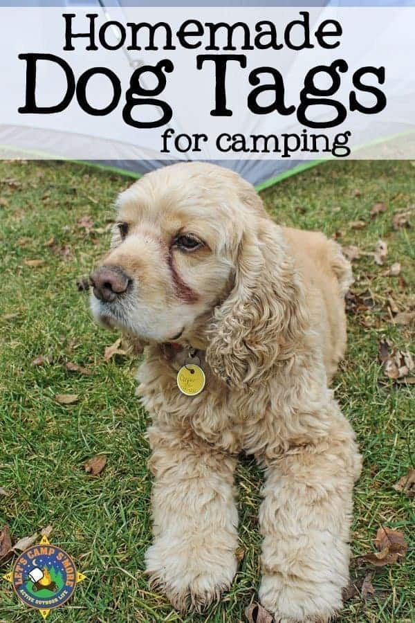 custom diy dog tag on a dog for camping