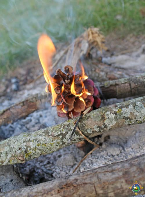 campfire being started with a pinecone fire starter