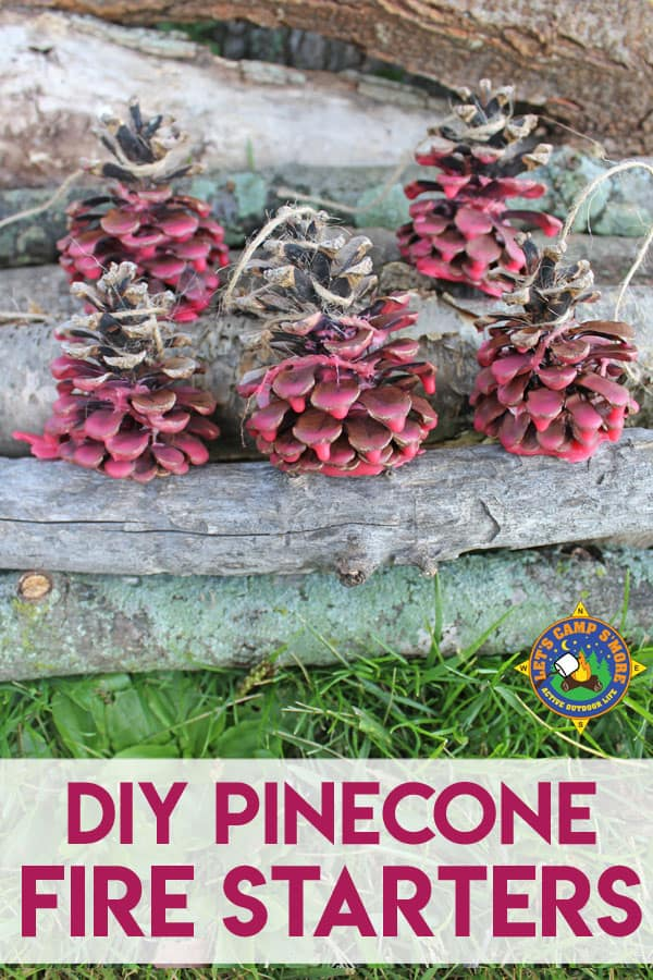 DIY Pinecone Fire Starters placed by logs for a campfire