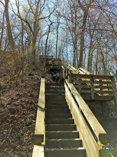 Stairs to Eagles Nest Overlook at Fox Ridge State Park