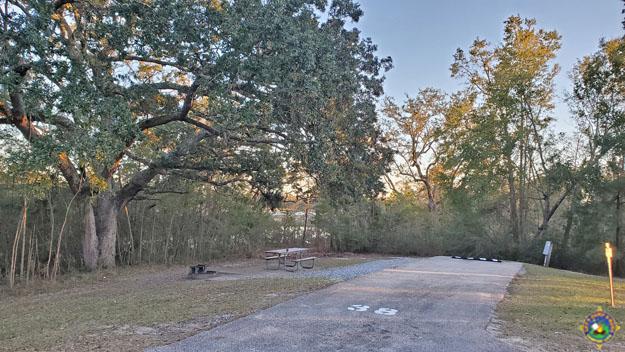 campsite 38 at Davis Bayou Campground