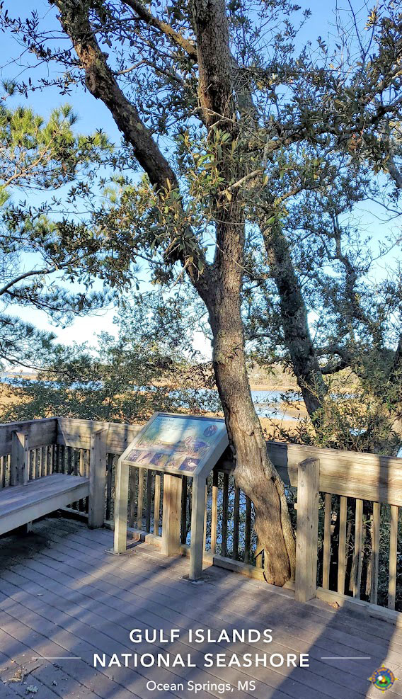 wooden patio overlooking the bayou behind the Davis Bayou Visitor Center