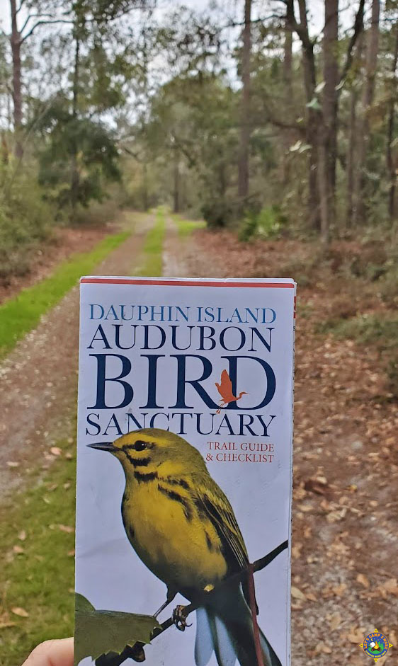 person holding the Dauphin Island Bird Audubon Sanctuary Guide Map and Checklist on one of the trails