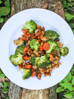 camping stir fry with broccoli, carrots, chicken, and cashews