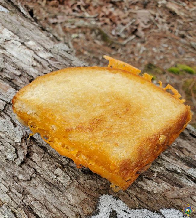 a grilled cheese sandwich on a log