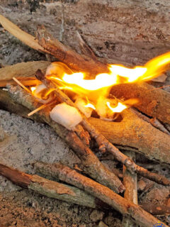 a campfire started with homemade fire starters